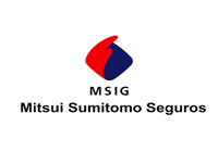 icon_seg_msig